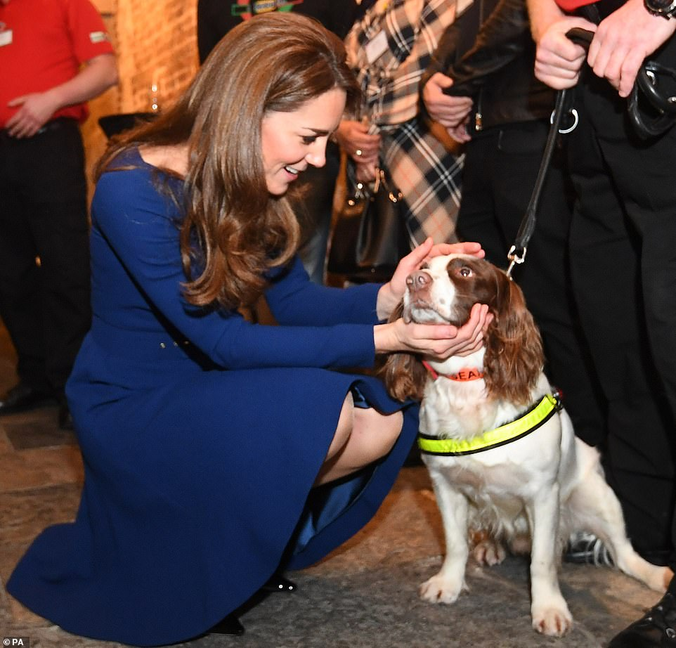 Prince William and Duchess Kate Attend the Launch of National Emergencies