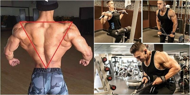 Back Workout: 5 Tips For A Strong Back