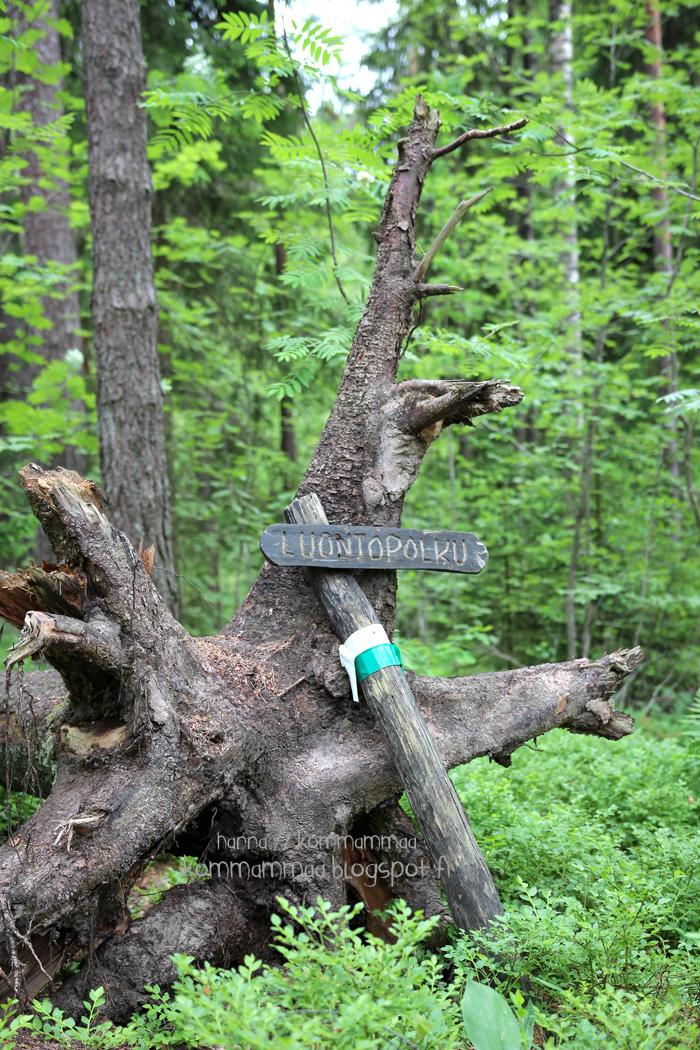 sipoonkorpi kansallispuisto luontopolku