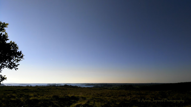view of lough Corrib early in the morning