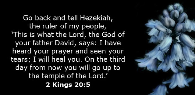 Go back and tell Hezekiah, the ruler of my people, 'This is what the Lord, the God of your father David, says: I have heard your prayer and seen your tears; I will heal you. On the third day from now you will go up to the temple of the Lord.'