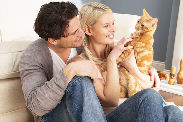 Couple with an adopted ginger cat