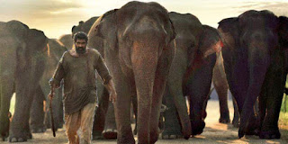 hathi-mere-sathi-release-in-march
