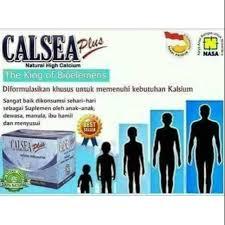 CALSEA