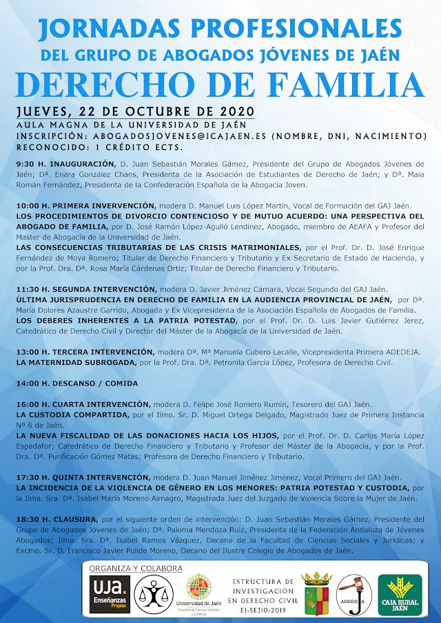 Primeras Jornadas Profesionales del GAJ Jaén