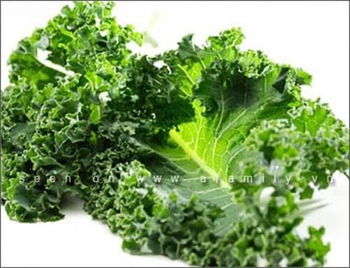 Lý do bạn nên ăn món ăn từ cải xoăn