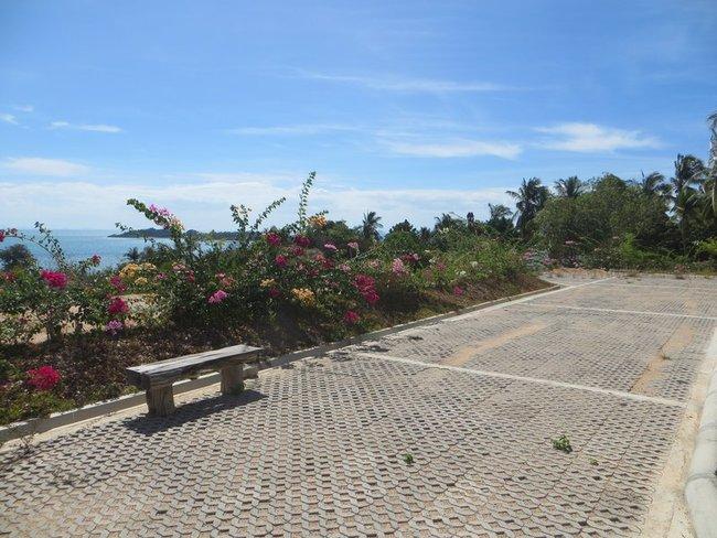 Цветы и скамейка
