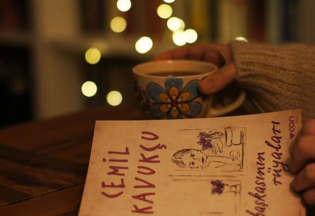 cemil kavukçu - başkasının rüyaları kitap özeti