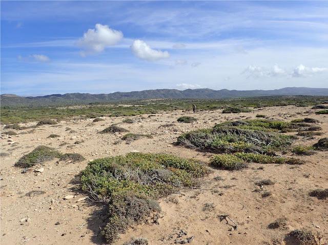 2020 results of reconnaissance surveys for the location of Pleistocene sites on Cyprus' Akamas Peninsula