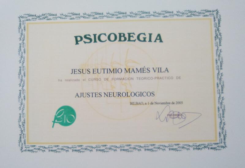 diploma de ajustes neurologicos