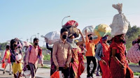 migrators