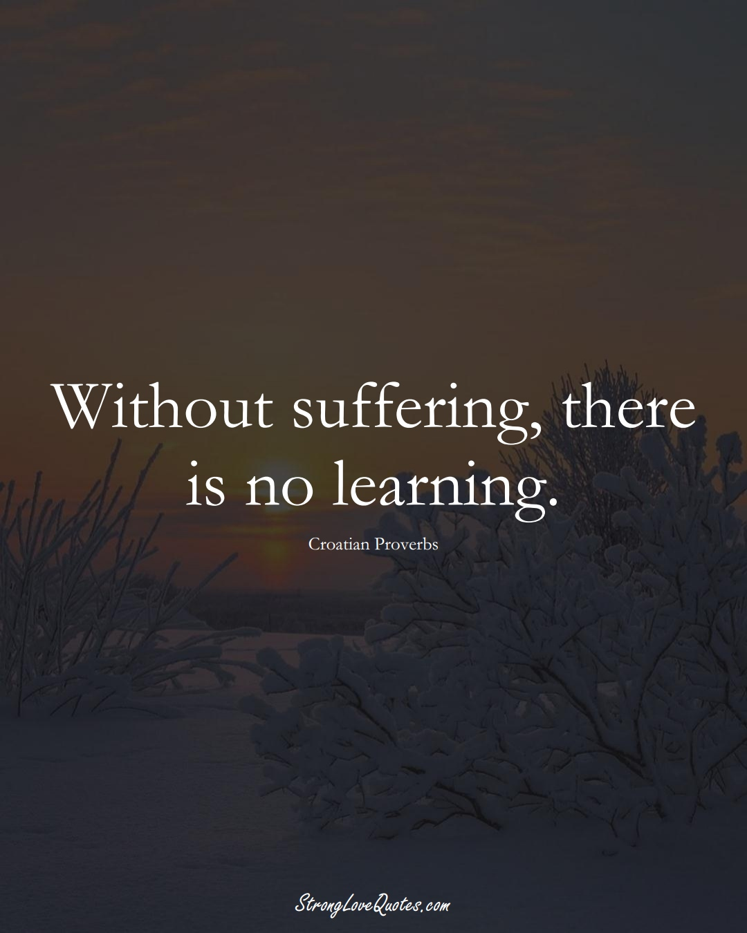 Without suffering, there is no learning. (Croatian Sayings);  #EuropeanSayings