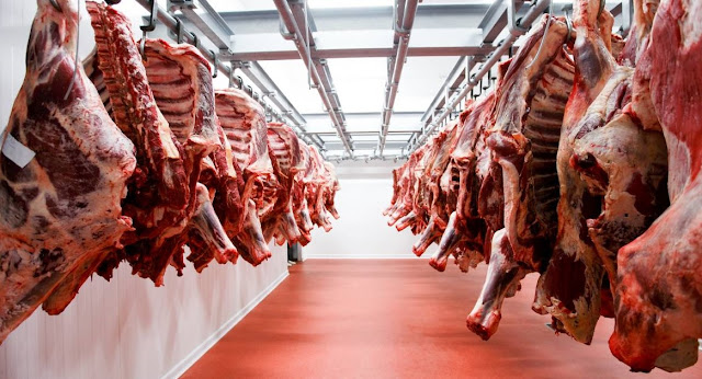 Interesting article on HALAL Meat!!