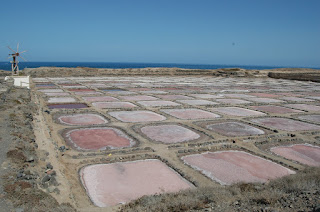 Salinas de Tenefé
