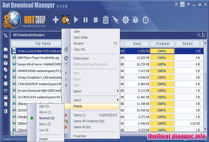 Download Ant Download Manager Pro 1.13.3 Full Crack, phần mềm hỗ trợ download, Ant Download Manager Pro, Ant Download Manager Pro free download, Ant Download Manager Pro full key