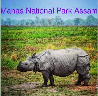 मानस राष्ट्रीय उद्यान असम । Manas National Park Assam