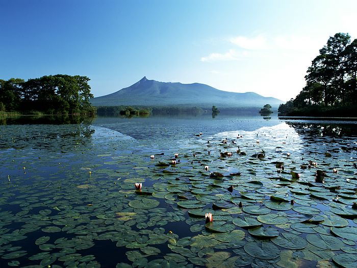 japan hokkaido landscape image - photo #12
