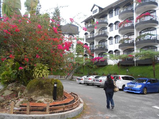 Percutian best di Strawberry Park Resort