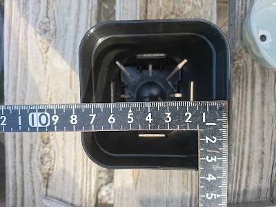 1辺7.5センチ
