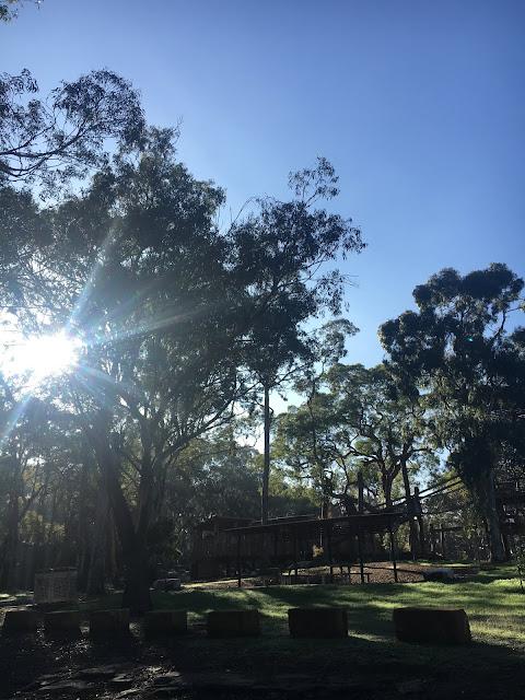 Blue sky day in Sydney