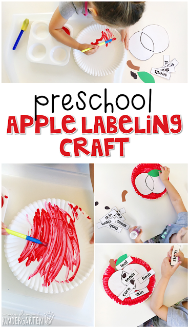 This apple labeling craft is an adorable way to incorporate lots of fine motor skills practice and science learning. Great for tot school, preschool, or even kindergarten!