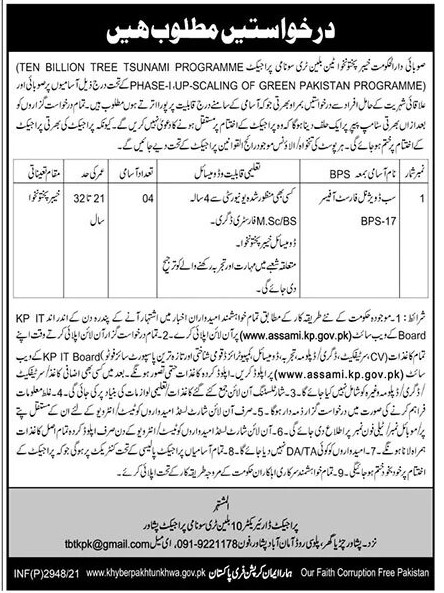 www.assami.kp.gov.pk Jobs 2021 - Ten Billion Tree Tsunami Programme KPK Jobs 2021 in Pakistan