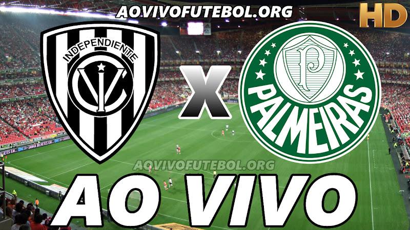 Independiente Del Valle x Palmeiras Ao Vivo HDTV