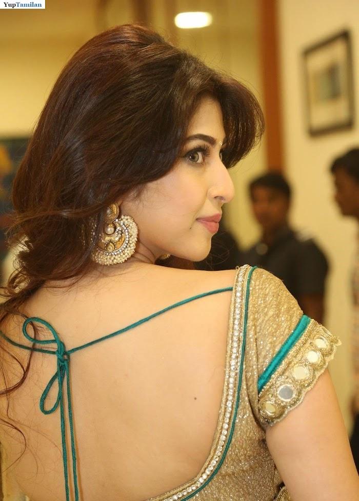 Sonarika Bhadoria Spicy Saree Photos-Cute Stills in Sarees
