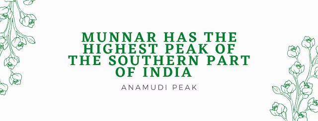 Travel To Munnar