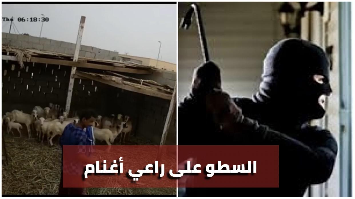 عاجل/ بالفيديو : السطو على راعي أغنام و سرقة منه قرابة 200 مليون...