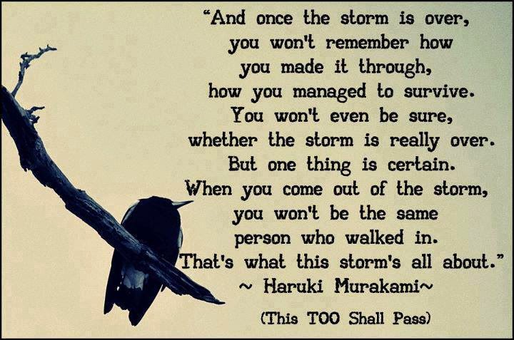 My Favourite Quotes And Once The Storm Is Over