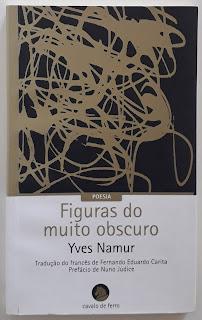 Figuras do muito obscuro, de Yves Namur