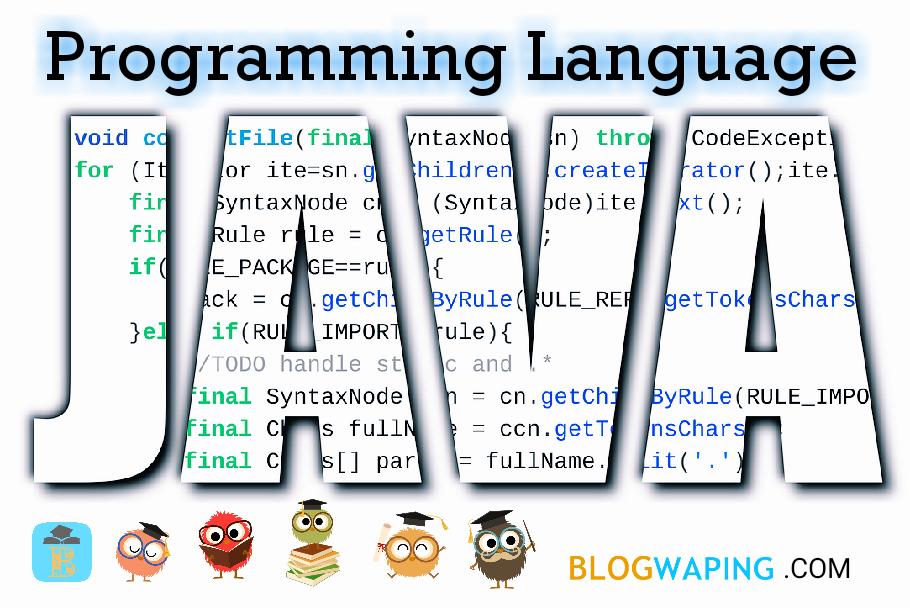 Basic Information About Java Programming Language - BLOGWAPING