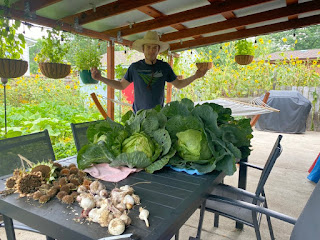 Man with Cabbages