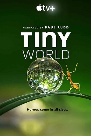 Tiny World Season 1 English 480p 720p All Episodes