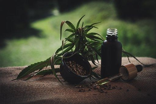 Is CBD Oil Balm Effective For Fast Pain Relief?