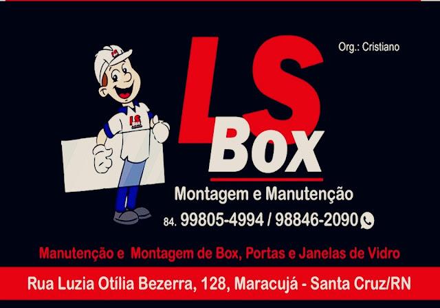 L S BOX: MANUTENÇÃO E  MONTAGEM DE BOX, PORTAS E JANELAS DE VIDRO