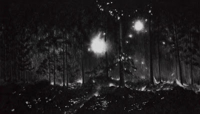Raquel Maulwurf Burning, 2011 charcoal and pastel on mat board  153 x 264 cm