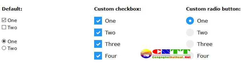 Tùy chỉnh CSS đẹp cho nút Input Radio và Checkbox