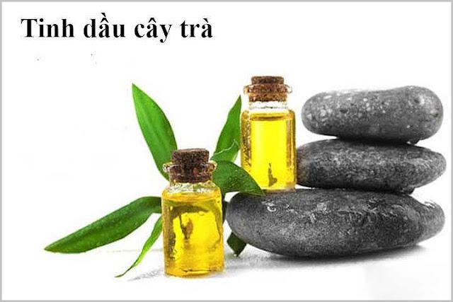 Tinh dầu cây trà trị rụng tóc