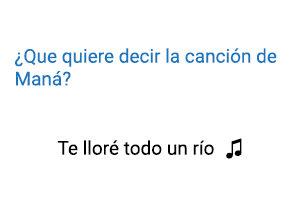 Significado de la canción Te Lloré Todo un Río Maná.