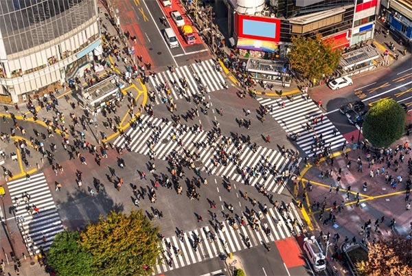 Roam the hustle and bustle places in Tokyo