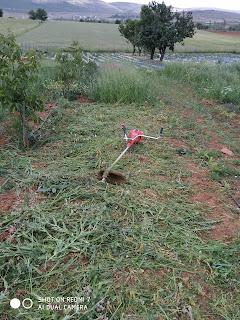 Konya Çim biçme-yabani ot temizliği