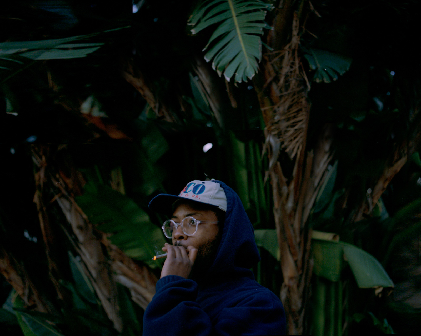 Neues von Knxwledge | Don't Be Afraid & Learn / Howtokope Musikvideos | Albumankündigung