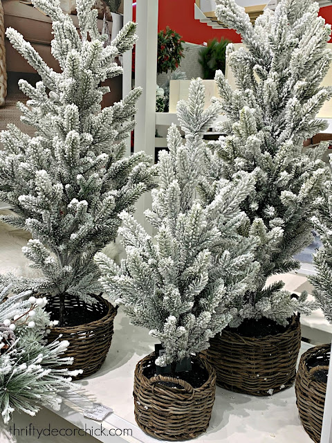 Small snowy trees in baskets