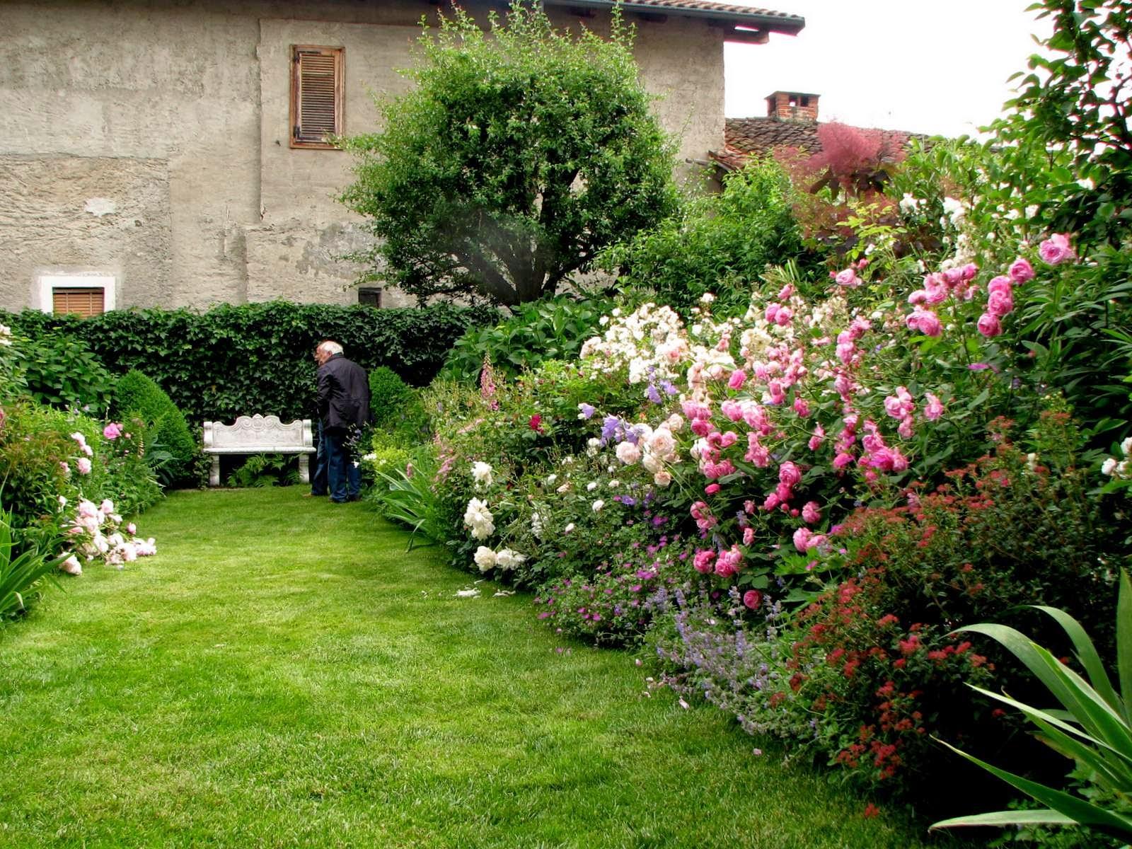 Aiuole con piante perenni pr29 regardsdefemmes for Piante perenni per bordure