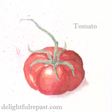 Simple Roasted Tomatoes for the Freezer (this image, a watercolor sketch) / www.delightfulrepast.com