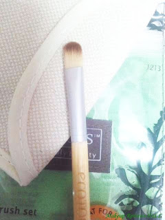 Ecotools Concealer Brush Review