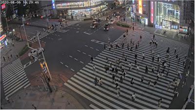 Tokyo Shinjuku Crossing