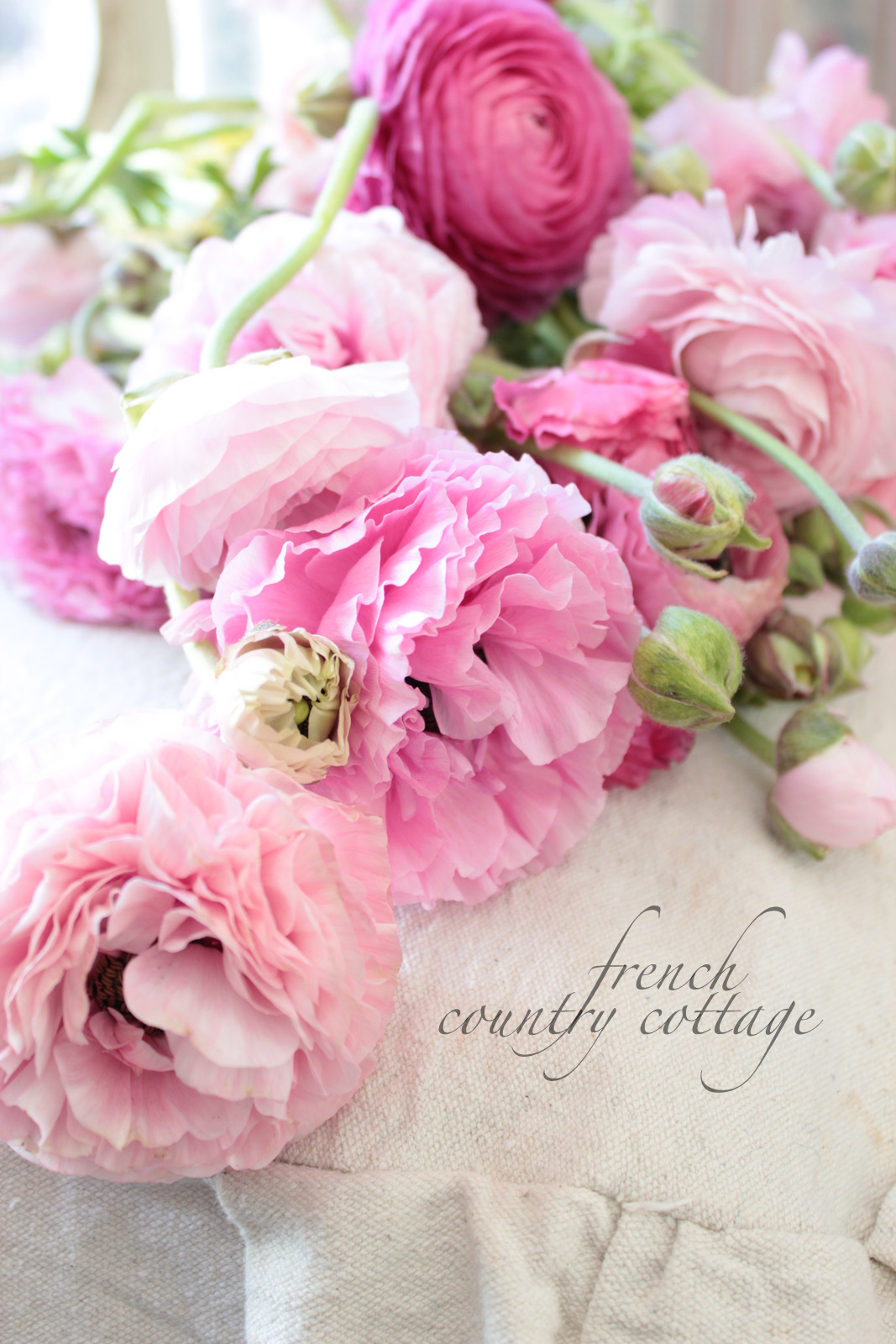 Decorating with dried flowers   FRENCH COUNTRY COTTAGE My favorite bouquets are simple and usually a bunch of one flower or color